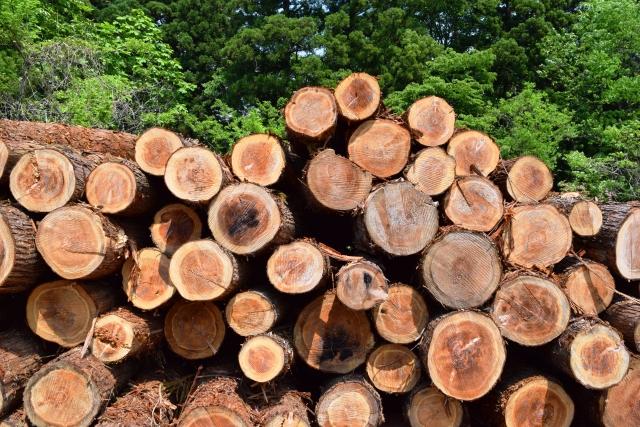 輸入材と国産材 木材 株式会社エムズ